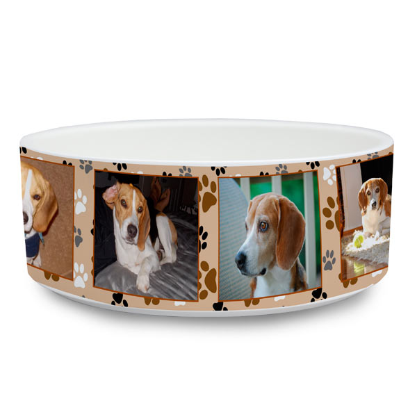 Create your own pet food dish with photos and custom text