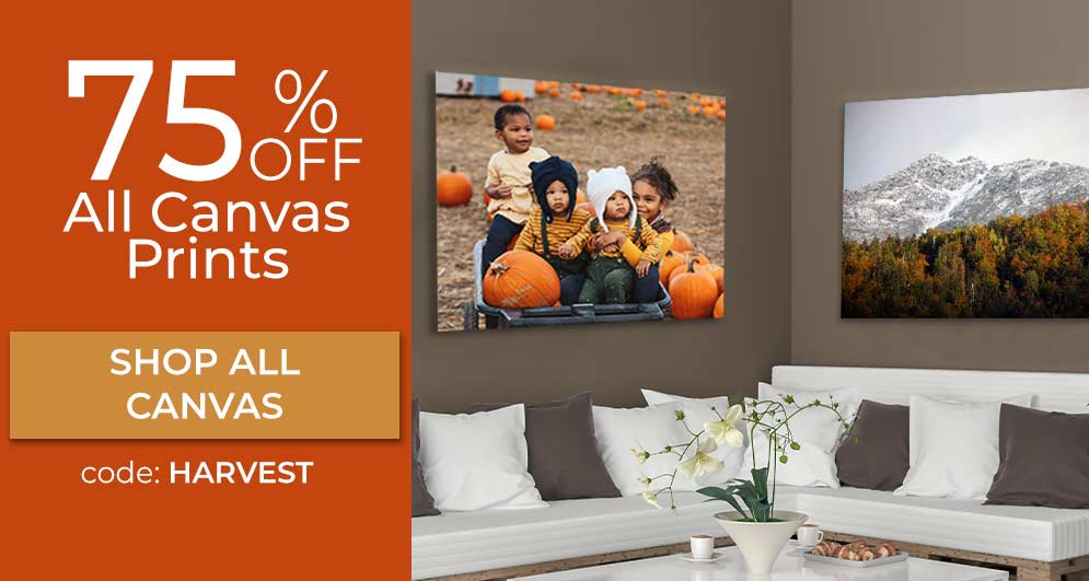 Print your pictures on canvas and display the canvas wall art in your home or office with MyPix2